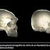Algumas pessoas possuem um cérebro levemente Neandertal