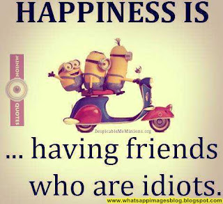 Funny Photos For Whatsapp Group Dp Funny Png Cute funny dp for friends. funny png