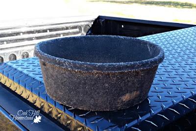 Black rubber buckets keep water thawed longer than metal buckets.