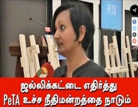 PeTA to approach SC against Jallikattu
