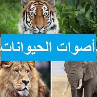 تطبيق أسماء و أصوات الحيوانات بالصوت و الصورة ....... 1111111