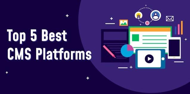 top cms platforms website builders