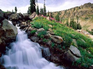 صور الطبيعة والأنهار