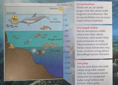 stratifikasi dalam laut