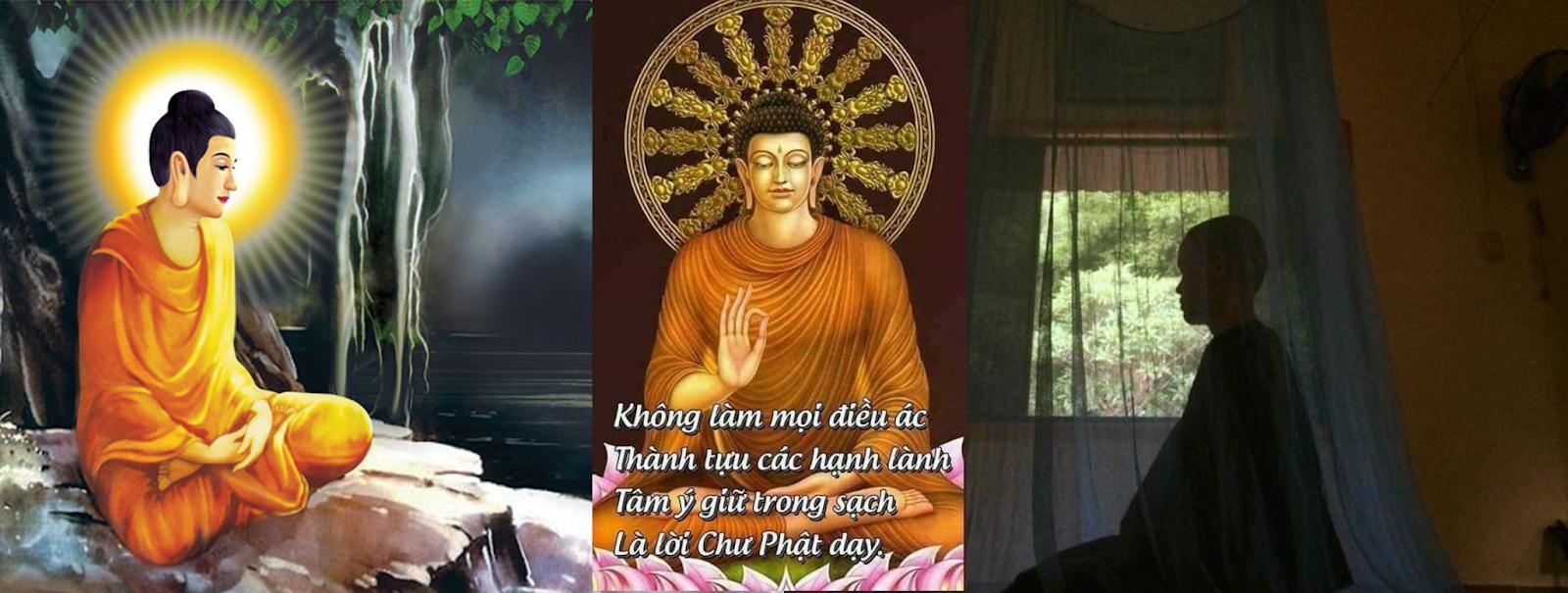 Những ngày chẳng muốn làm gì chẳng muốn ăn... quán tưởng sự chết - Tu nữ Tịnh Tín