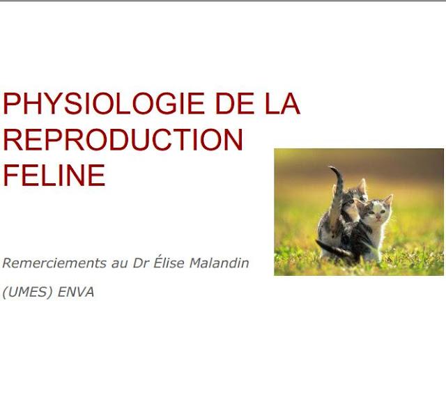 PHYSIOLOGIE DE LA REPRODUCTION FELINE - WWW.VETBOOKSTORE.COM