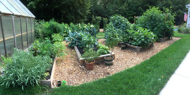 vegetable garden raised bed in a frame mulch