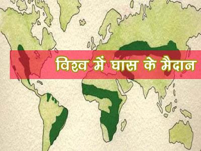 विश्व के प्रमुख घास के मैदान   Vishv Ke Pramukh Ghas Ke Maidan