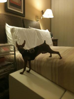 rampas para camas altas