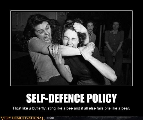 selfdefence security memetics self defense is the best policy