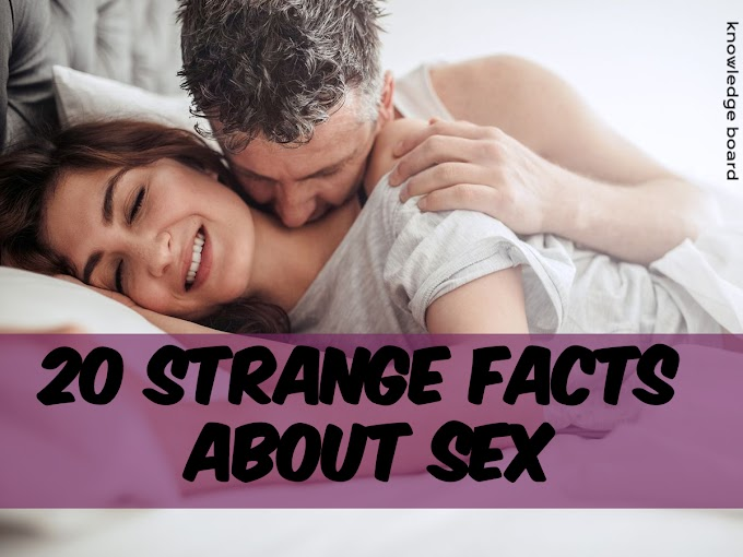 20 Strange Facts About Sex