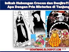 Inikah Hubungan Crocus dan Denjiro?! Hungannya Apa Dengan Pria Misterius di Tanjung Kembar!