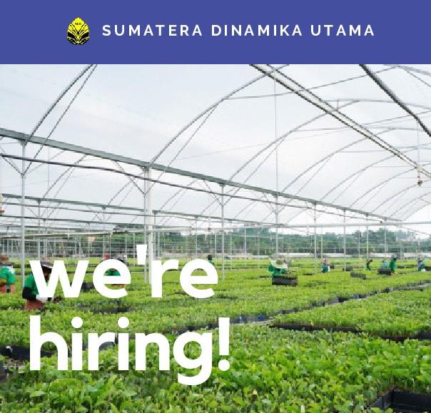 Lowongan Pekerjaan PT Sumatera Dinamika Utama Deadline 15 Desember 2015