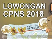 Rapat Seleksi CPNS 2018, Kemenpan : Pengumuman Resmi Tinggal Menunggu Waktu