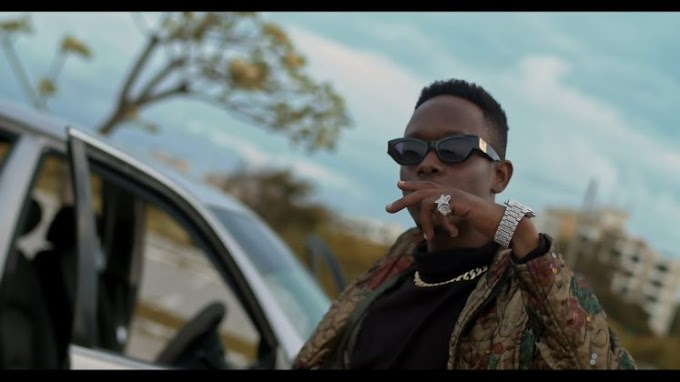 VIDEO | Salmin Swaggz Ft. Lil Dwin – Day One | Download New song