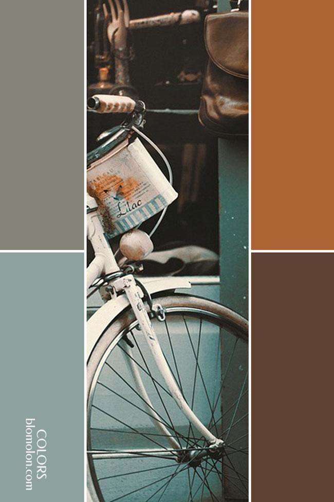 variedad_en_color_combinacion_1