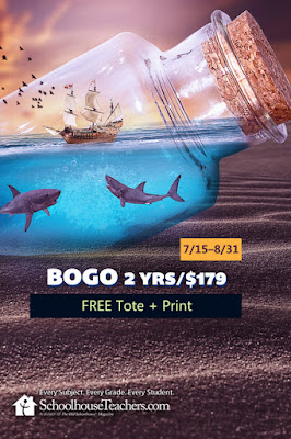 BOGO 2 Yrs/$179; Free tote & Print; sharks in a bottle on a beach graphic