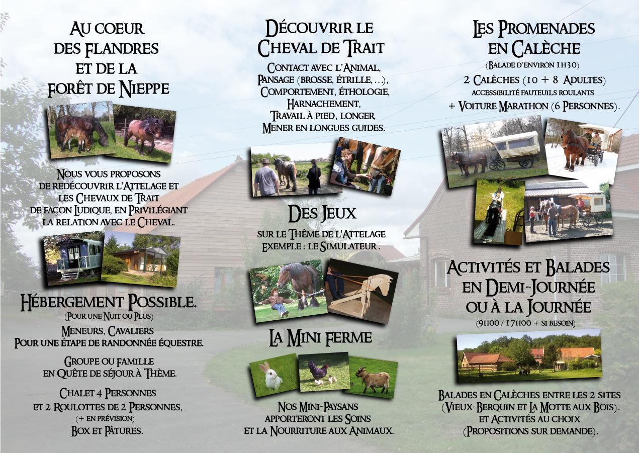 http://danslepasduncheval.blogspot.fr/p/notre-equipe.html