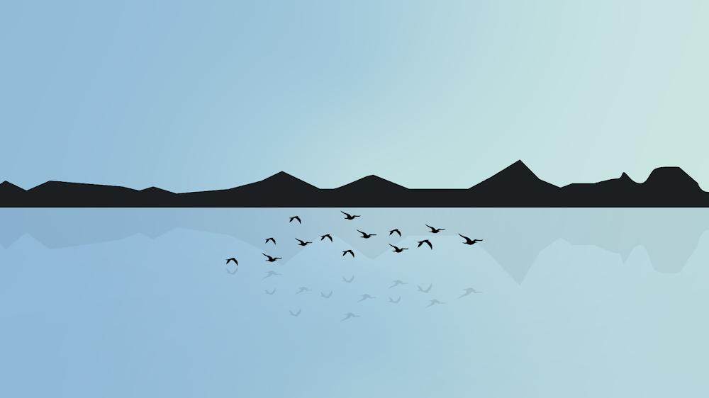 minimalist-wallpaper-birds-in-the-lake-high-resolution-2160p-4320p-1080p