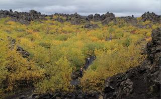 Campos de lava Dimmuborgir, Islandia, Iceland.