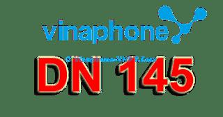Gói cước trả sau Vinaphone DN-145