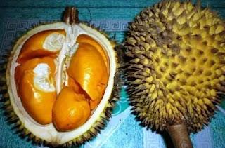 buah lay