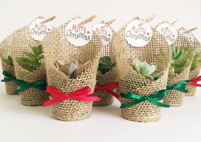 DIY, Succulents, Christmas, crafts, decor, seasonal, holiday crafts, holidays, holiday party, party favors, party gifts, succulent party favor