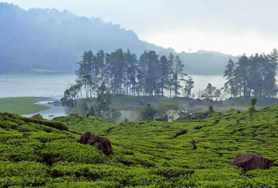 Paket Wisata Bandung Tour Murah 3 Hari 2 malam - Wisata Danau Situpatenggang