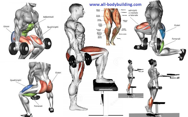 Top 4 Dumbbell Exercises For Legs