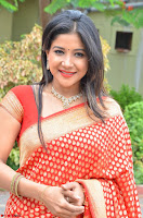 Sakshi Agarwal  in Orange Saree at Inauguration of Handloom And Handicraft exhibition ~  Exclusive 12.JPG