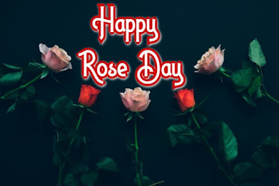 happy valentine's day 2020 wishes, happy rose day wishes, rose day 2020 wishes, happy rose day 2020 images