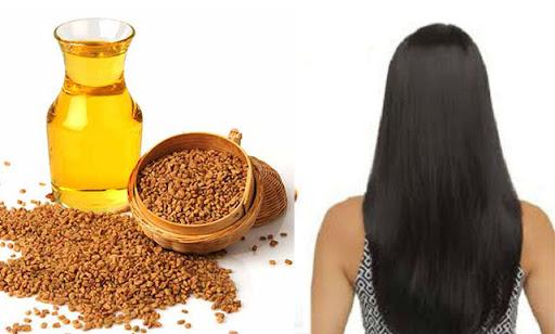 الحلبة لتنعيم الشعر