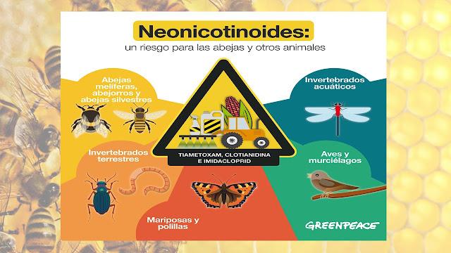¿Qué son los neonicotinoides?