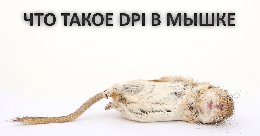 Картинка мышек раскраска