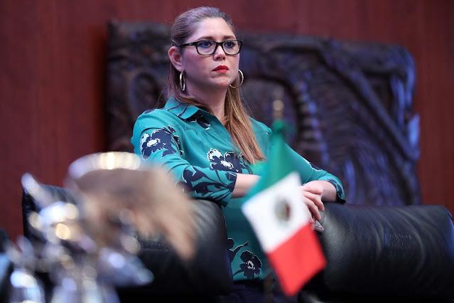 En reforma eléctrica, Morena votó por el bienestar de las familias, sostiene Verónica Camino Farjat