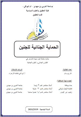 مذكرة ماستر: الحماية الجنائية للجنين PDF
