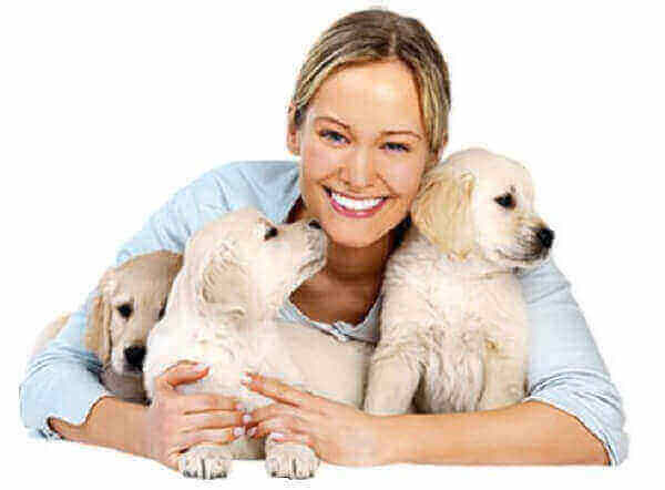 provide health care puppies