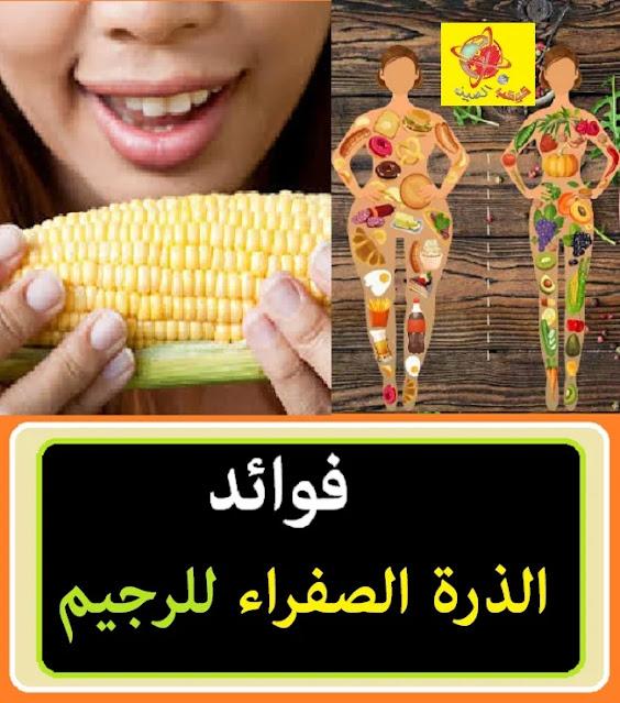 """""""فوائد الذرة الصفراء للجنس"""" """"فوائد الذرة الصفراء للحامل"""" """"فوائد الذرة الصفراء للرجيم"""" """"فوائد الذرة المشوية"""" فوائد الذرة المحمصة"""" """"استخدامات الذرة الصفراء"""" فوائد الذرة الصفراء لمرضى السكر"""" """"فوائد الذرة البيضاء"""" """""""",""""فوائد الذرة الصفراء"""","""""""","""""""","""""""","""""""","""""""","""""""","""""""" """""""",""""فوائد الذرة الصفراء للمواشي"""","""""""","""""""","""""""","""""""","""""""","""""""","""""""" """""""",""""فوائد الذرة الصفراء للنساء"""","""""""","""""""","""""""","""""""","""""""","""""""","""""""" """""""",""""فوائد الذرة الصفراء للرجيم"""","""""""","""""""","""""""","""""""","""""""","""""""","""""""" """""""",""""فوائد الذرة الصفراء للدجاج"""","""""""","""""""","""""""","""""""","""""""","""""""","""""""" """""""",""""فوائد الذرة الصفراء للحمام"""","""""""","""""""","""""""","""""""","""""""","""""""","""""""" """""""",""""فوائد الذرة الصفراء لمرضى السكر"""","""""""","""""""","""""""","""""""","""""""","""""""","""""""" """""""",""""فوائد الذرة الصفراء للحامل"""","""""""","""""""","""""""","""""""","""""""","""""""","""""""" """""""",""""فوائد الذرة الصفراء للطيور"""","""""""","""""""","""""""","""""""","""""""","""""""","""""""" """""""",""""فوائد الذرة الصفراء المسلوقة"""","""""""","""""""","""""""","""""""","""""""","""""""","""""""" """""""",""""فوائد الذرة الصفراء المشويه"""","""""""","""""""","""""""","""""""","""""""","""""""","""""""" """""""",""""فوائد الذرة الصفراء المسلوقة للرجيم"""","""""""","""""""","""""""","""""""","""""""","""""""","""""""" """""""",""""فوائد الذرة الصفراء المسلوقة للاطفال"""","""""""","""""""","""""""","""""""","""""""","""""""","""""""" """""""",""""فوائد الذرة الصفراء النيئة"""","""""""","""""""","""""""","""""""","""""""","""""""","""""""" """""""",""""فوائد الذرة الصفراء المسلوقة للحامل"""","""""""","""""""","""""""","""""""","""""""","""""""","""""""" """""""",""""فوائد الذرة الصفراء المسلوقة للجنس"""","""""""","""""""","""""""","""""""","""""""","""""""","""""""" """""""",""""فوائد الذرة الصفراء المطحونة"""","""""""","""""""","""""""","""""""","""""""","""""""","""""""" """""""",""""فوائد الذرة الصفراء للانسان"""","""""""","""""""","""""""","""""""","""""""","""""""","""""""" """""""",""""فوائد الذرة العويجة"""","""""""","""""""","""""""","""""""","""""""","""""""","""""""" """""""",""""فوائد الذرة الصفراء الفشار"""","""""""","""""""","""""""","""""""","""""""","""""""","""""""" """""""",""""فوائد الذرة الحلو"""","""""""","""""""","""""""","""""""","""""""","""""""","""""""" """""""",""""فوائد الذرة الحلوة"""","""""""","""""""","""""""","""""""","""""""","""""""","""""""" """""""",""""فوائد الذرة الاحمر"""","""""""","""""""","""""""","""""""","""""""","""""""","""""""" """""""",""""فوائد الذرة الاخضر"""","""""""","""""""","""""""","""""""","""""""","""""""","""""""" """""""",""""فوائد الذره الشامي"""","""""""","""""""","""""""","""""""","""""""","""""""","""""""" """""""",""""استعمالات الذرة الصفراء"""","""""""","""""""","""""""","""""""","""""""","""""""","""""""" """""""",""""فوائد الذرة المستنبتة"""","""""""","""""""","""""""","""""""","""""""","""""""","""""""" """""""",""""فوائد الذرة الخضراء"""","""""""","""""""","""""""","""""""","""""""","""""""","""""""" """""""",""""فوائد الذرة الصفراء للحيوانات"""","""""""","""""""","""""""","""""""","""""""","""""""","""""""" """""""",""""فوائد الذرة الصفراء للبط"""","""""""","""""""","""""""","""""""","""""""","""""""","""""""" """""""",""""فوائد الذرة للابقار"""","""""""","""""""","""""""","""""""","""""""","""""""","""""""" """""""",""""فوائد الذرة للتخسيس"""","""""""","""""""","""""""","""""""","""""""","""""""","""""""" """""""",""""فوائد الذرة المشوى للتخسيس"""","""""""","""""""","""""""","""""""","""""""","""""""","""""""" """""""",""""ما هي فوائد الذرة المسلوقة للرجيم"""","""""""","""""""","""""""","""""""","""""""","""""""","""""""" """""""",""""فوائد الذرة """