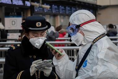 On average 493 People Per-Hour Worldwide Gets Sick By Coronavirus COVID-19