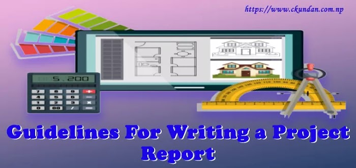 Guidelines for Writing a Project Report