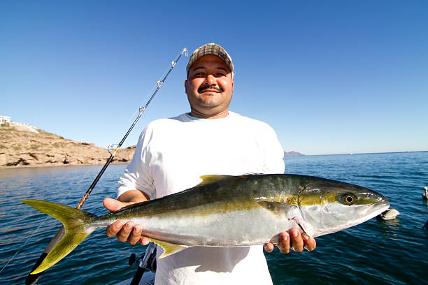 Fishing for Yellowtail – All About Doing It