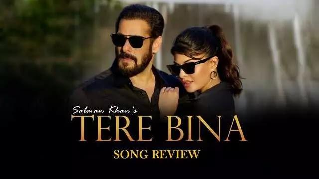 Tere Bina song Salman Khan