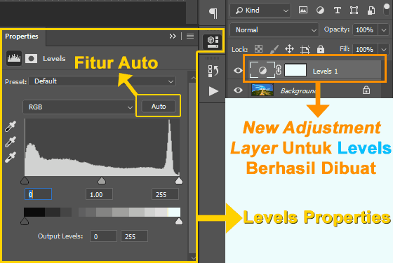 Pengaturan auto-levels di Photoshop
