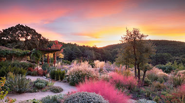 Fotos de Jardines de Europa premiadas en IGPOTY 14
