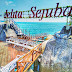 Setelah Hadiri Sail Natuna 2019, Asiknya Menyambangi Jelita Sejuba Resort