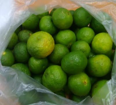 Jeruk Limau, Jeruk Limo, Citrus amblycarpa, Jeruk Sambal,