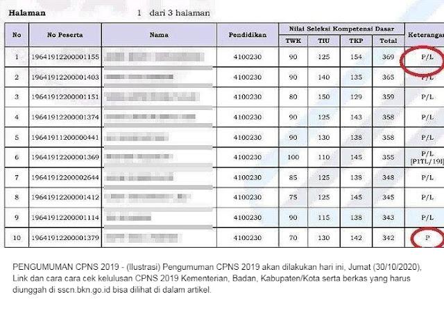 Nama-nama yang Lulus CPNS 2019 Cek Sscn.bkn.go.id, 65 Link Kementerian/Lembaga