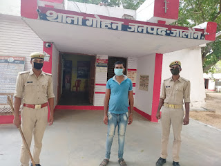 थाना गोहन पुलिस द्वारा अवैध देशी शराब के साथ अभियुक्त गिरफ्तार                                                                                                                                                      संवाददाता, Journalist Anil Prabhakar.                                                                                               www.upviral24.in