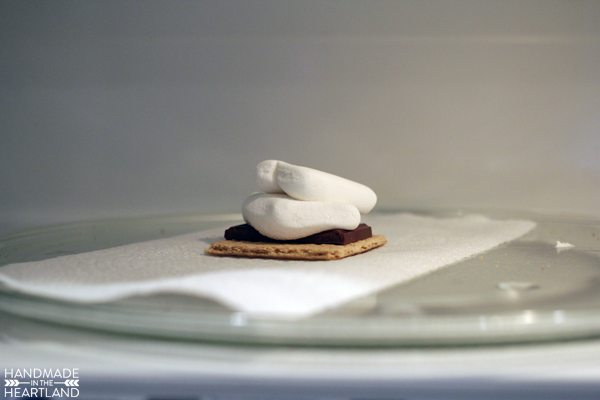 The Easiest Way to Make a S'more, Microwave S'more