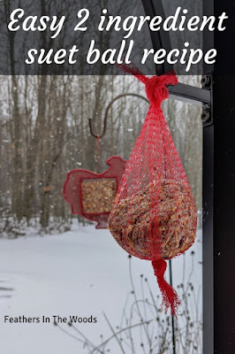 Recipe: suet balls for birds in winter.